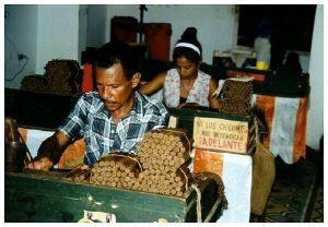 fabbrica sigari