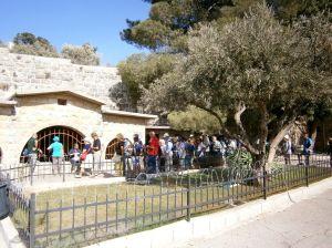 Gerusalemme - Getzemani